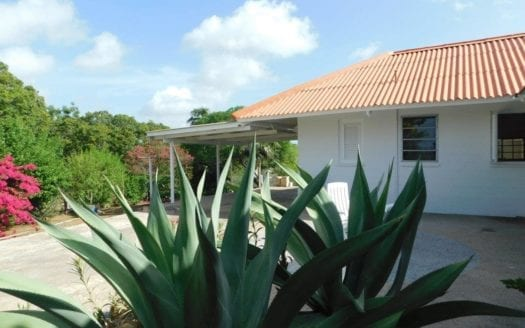 Julianadorp tropical house for rent